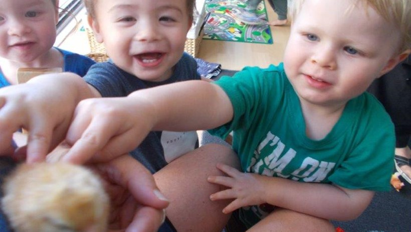 toddlers and infants with chicks 008.jpg