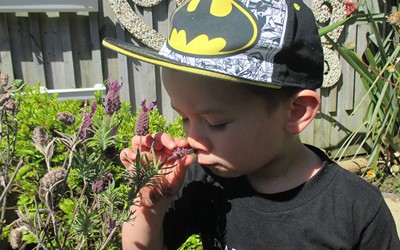 boy smelling flower at preschool